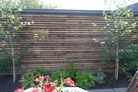 The timber screen disguises the unattractive garage wall