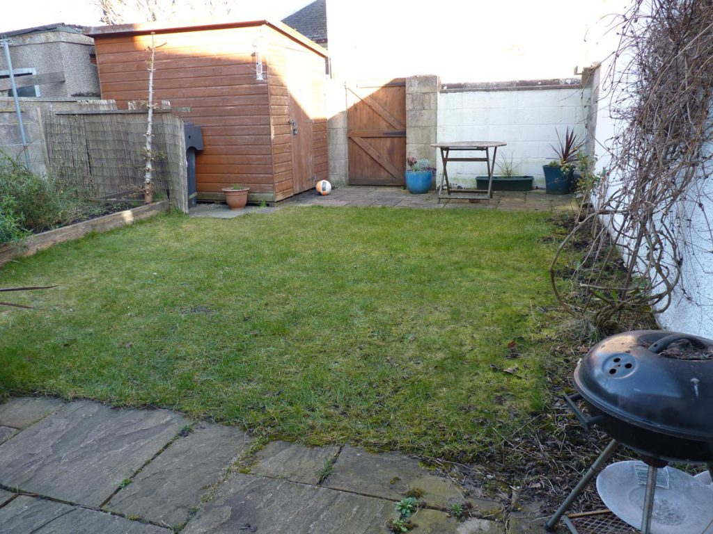 Before: some grass and a shed