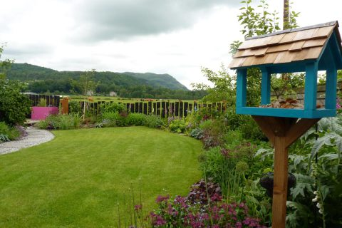 The upcycled bird table & the curving lawn