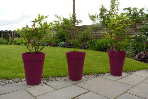 Pink pots are a feature on the morning patio