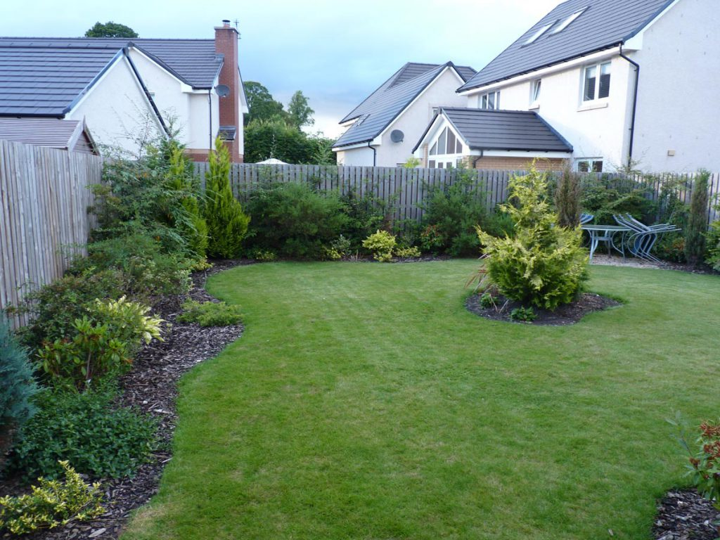 Before: a wiggly lawn and some conifers