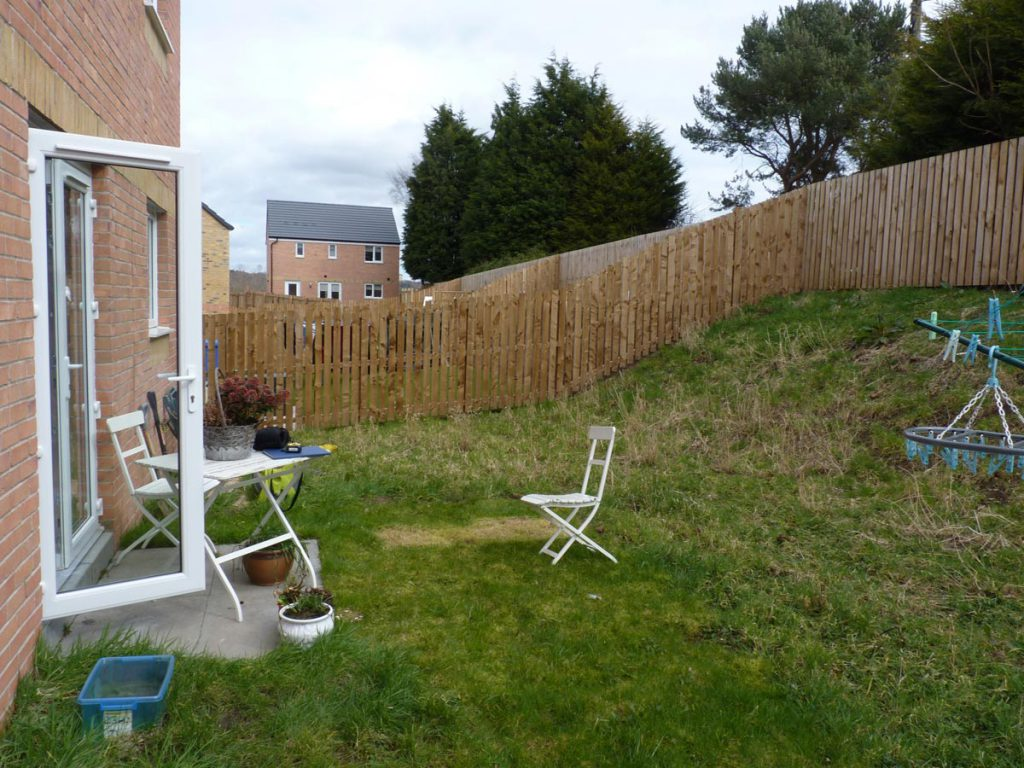 Before: a sloping garden with no interest
