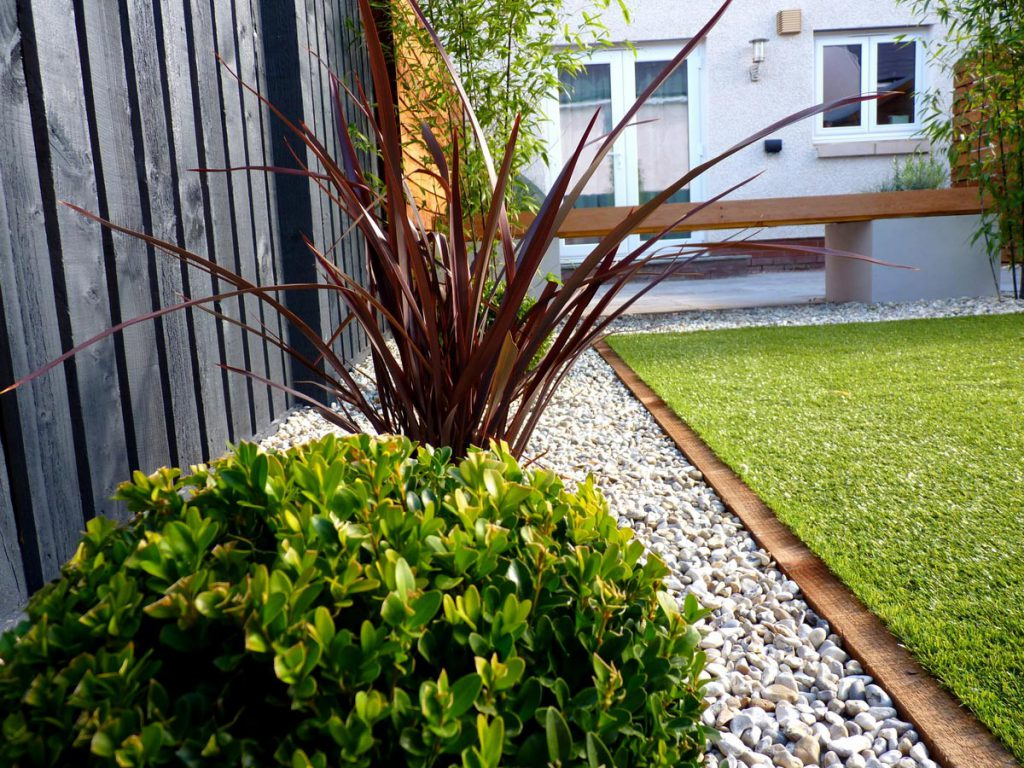 A contemporary low maintenance garden vialii garden design for Low maintenance outside plants