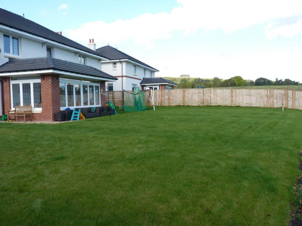 Before: lots of lawn and little of interest