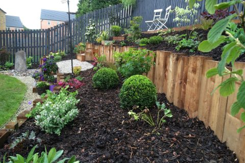 Planting adds interest and colour to the garden