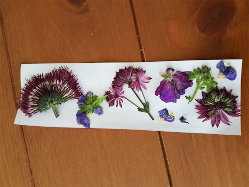 I made a pretty bookmark with my pressed flowers