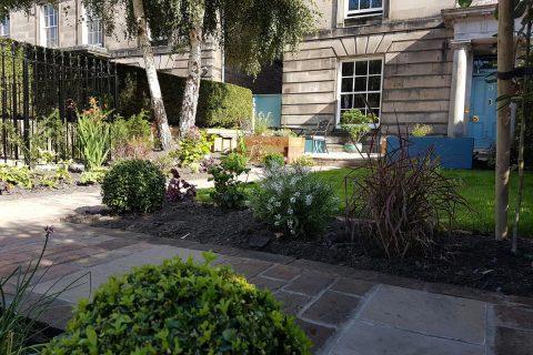 The view as you access the garden
