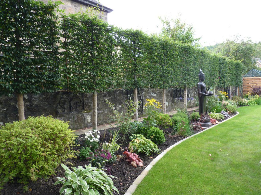 Your questions answered by Vialii Garden Design