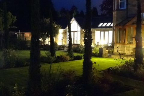 The garden at night time