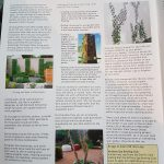 Bridge of Allan Times Spring 2010