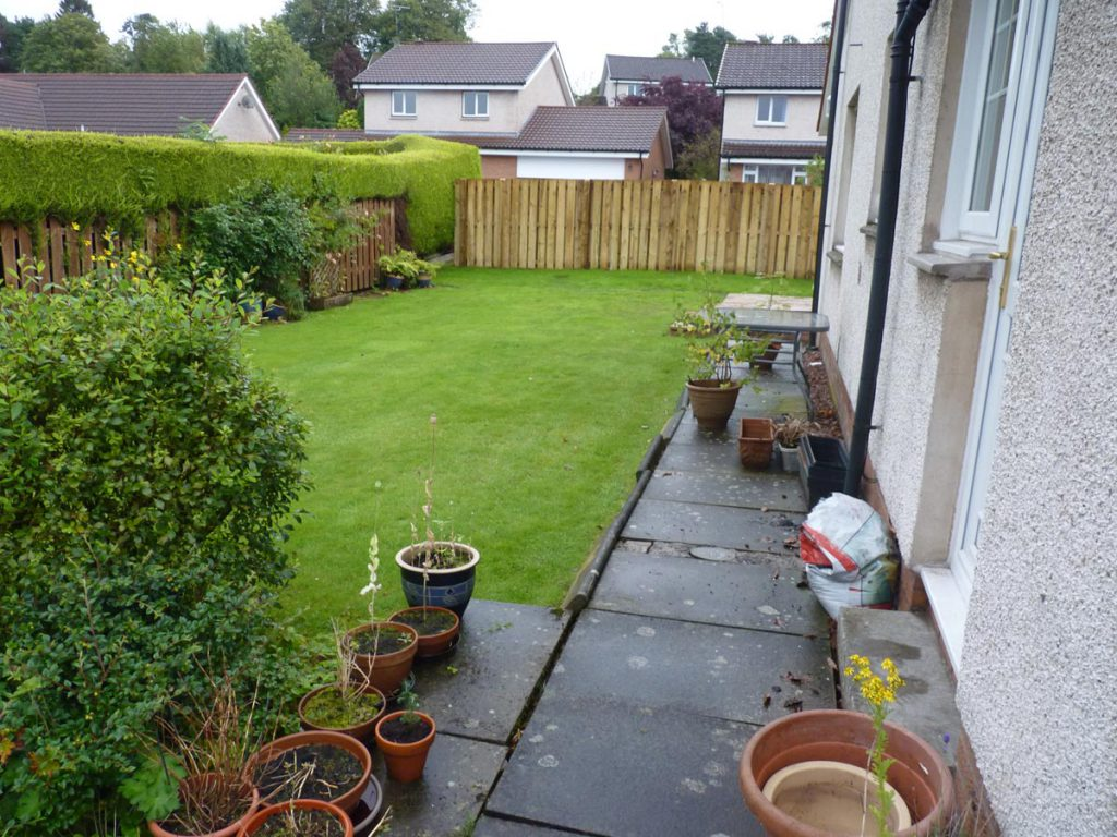 Before: the garden lacked interest