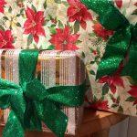 Christmas Garden Gifts 2016