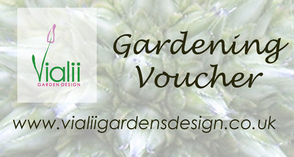 Get in touch to start creating your unique garden voucher