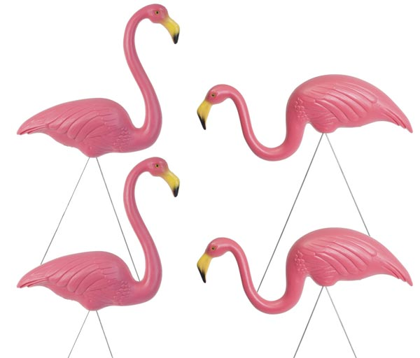 Garden flamingos, just like Gnomeo & Juliet