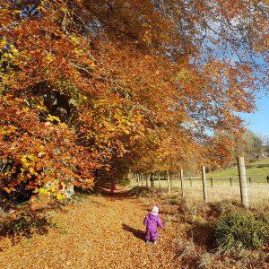 Tilda & I having an Autumn stroll