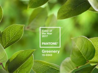 Pantone colour garden trends for 2017