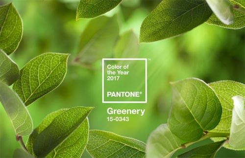 Pantone colour garden trends for 2017