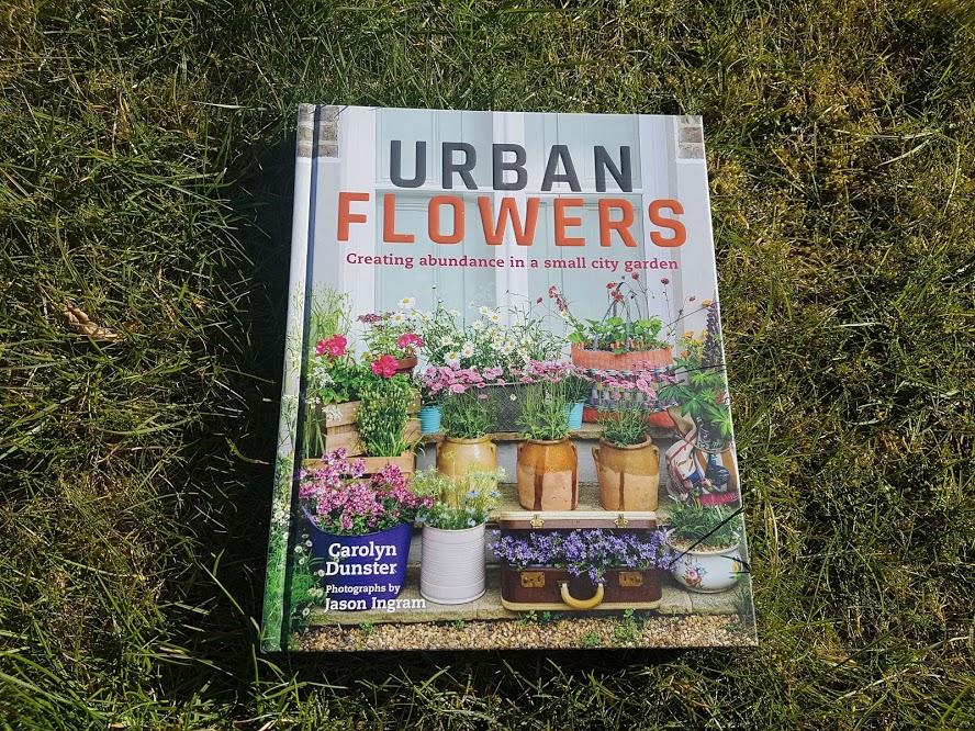 Urban Flowers by Carolyn Dunster