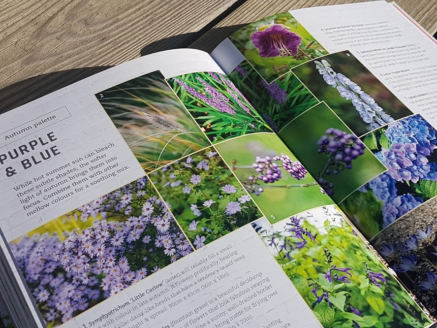 Colour palettes in planting