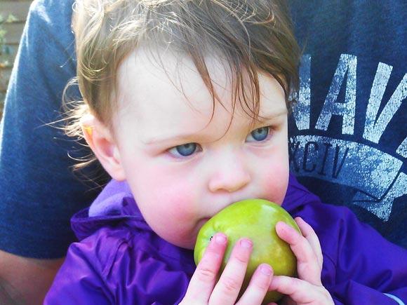 Lulu eating an apple