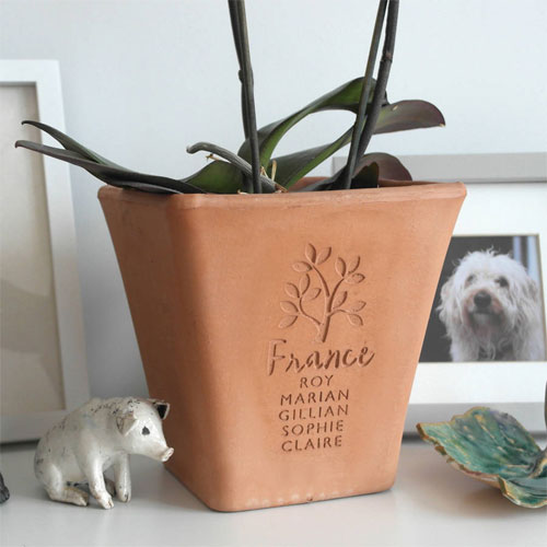Christmas gardening gifts