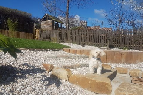 New steps make it easy to go around the garden