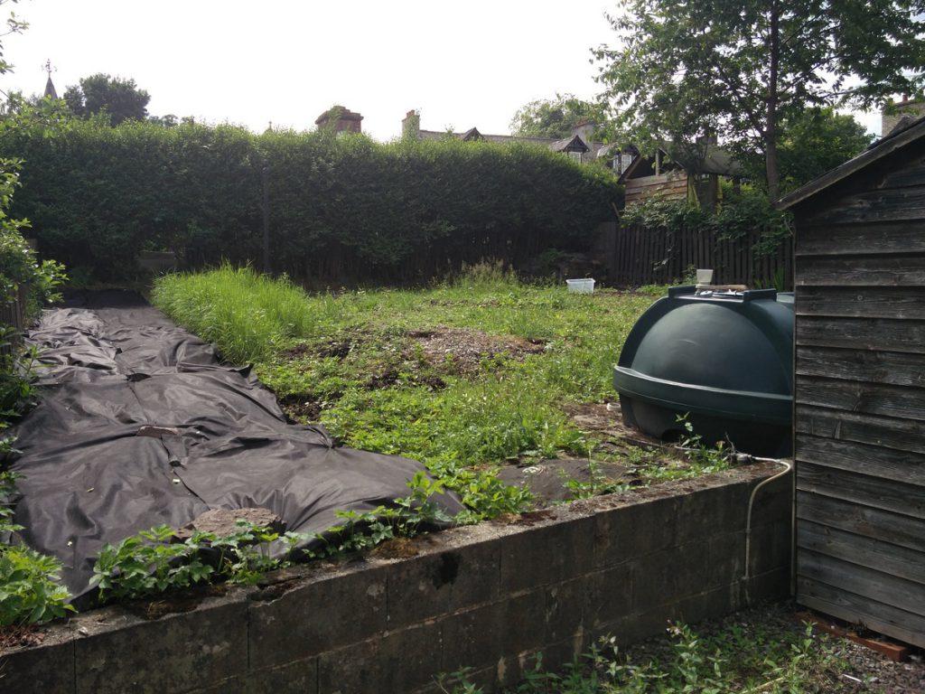 Dog-Friendly-Garden-Before