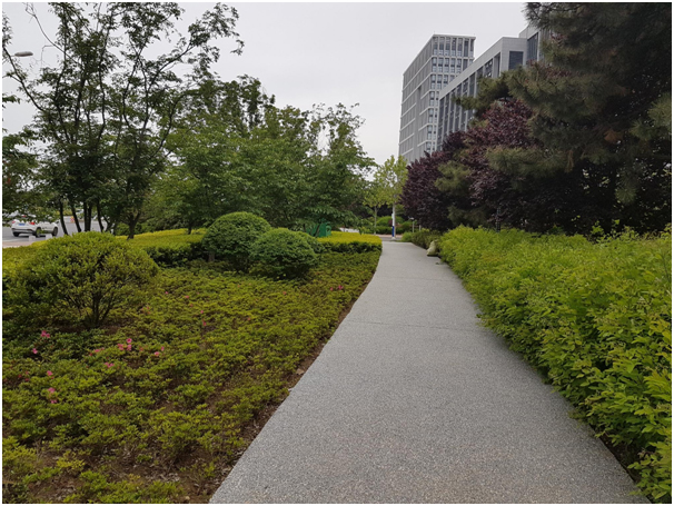 Beautiful planting and pathways make it difficult to believe its in the heart of a city of 5 million people!