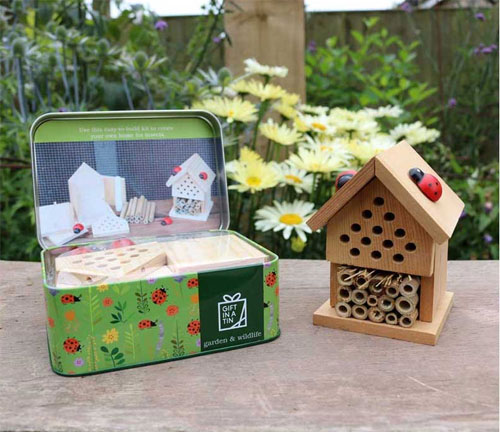 Make your insect house