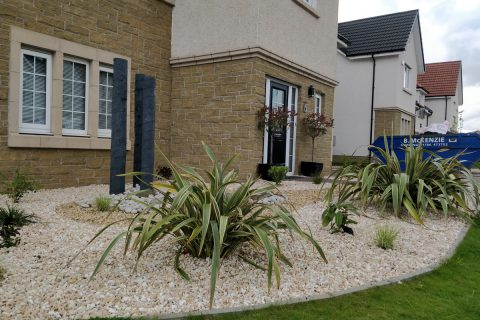 Structural planting makes big impact in the front