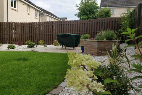New shrubs provide year round interest