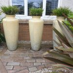 Three ceramic planters look great grouped together providing year round interest