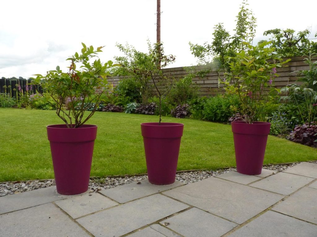 Pink plastic pots are a cheap but effective way to add colour to a garden