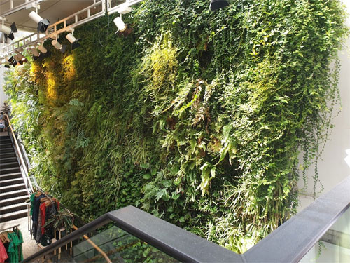 The green wall in Anthrapologie