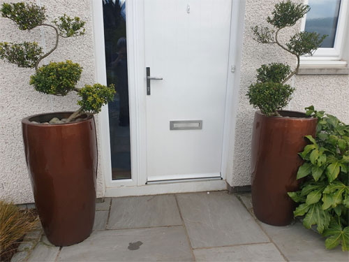 Top up your planters with compost and feed
