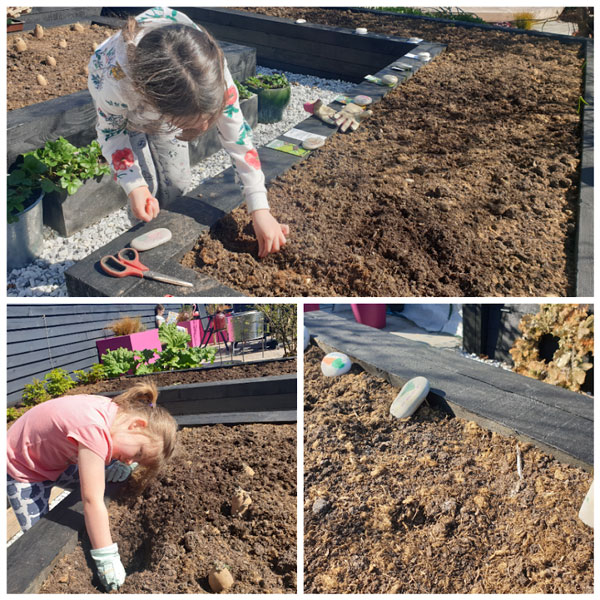 The girls sowed all the veg in our garden