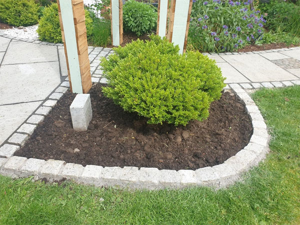 Add edging to your borders to stop grass from spreading into borders