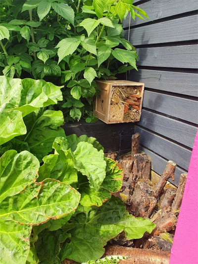 Find a quiet corner of the garden for your bug hotel.