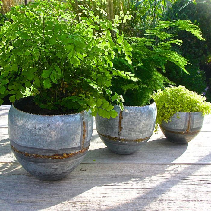Stylish zinc planters, perfect for growing herbs
