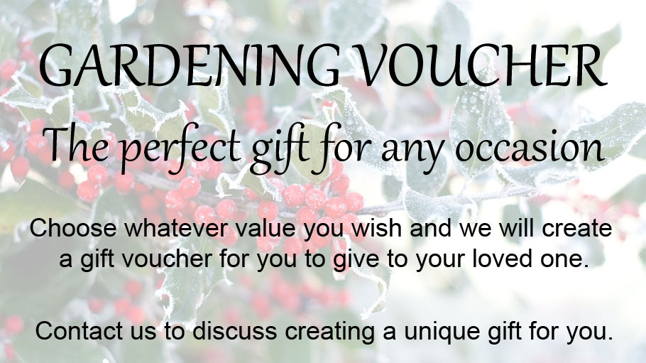 The perfect Christmas gift - a garden voucher