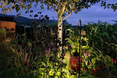 Uplighters in the borders create a lovely glow