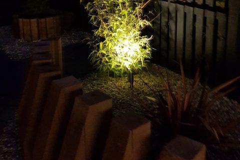 The garden still looks amazing at night